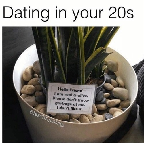 dating-in-your-20s-meme